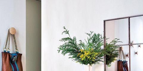Wall, Interior design, Interior design, Flower Arranging, Rectangle, Vase, Artifact, Floral design, Still life photography, Floristry,