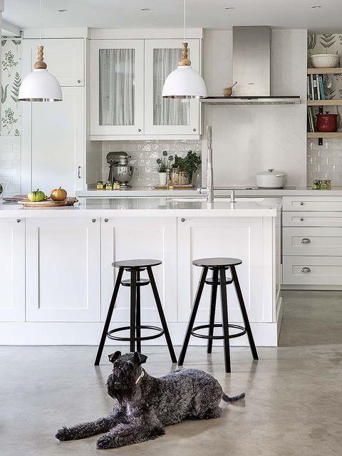Furniture, White, Room, Kitchen, Countertop, Interior design, Stool, Floor, Bar stool, Table,
