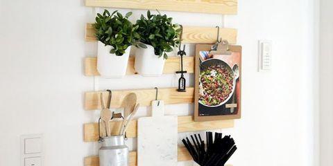 Shelf, Wall, Shelving, Room, Furniture, Interior design, Wood, Plant,