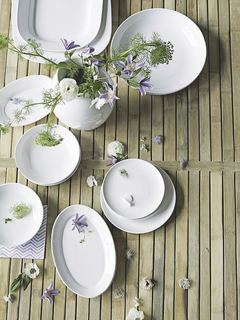 Serveware, Dishware, Green, Porcelain, Wood, White, Plate, Ceramic, Tableware, Lavender,