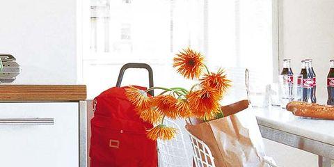 Floor, Flower Arranging, Net, Peach, Clothes hanger, Floral design, Creative arts, Household hardware, Cut flowers, Home accessories,