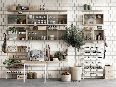 Shelf, Furniture, Room, Building, Shelving, Wall, Interior design, Architecture, Material property, Table,