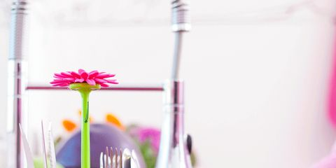 Serveware, Dishware, Textile, Petal, Pink, Magenta, Purple, Nail, Kitchen utensil, Home accessories,