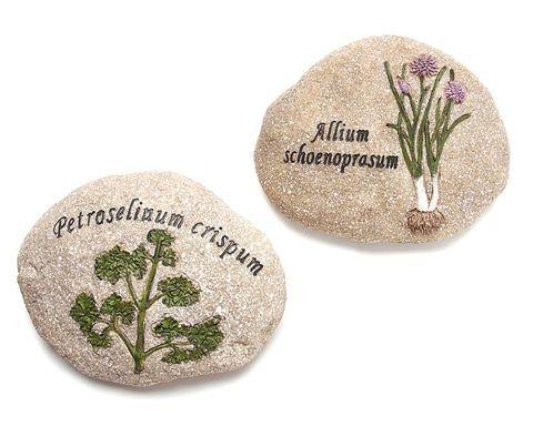 Botany, Beige, Badge,