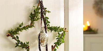 Branch, Twig, Botany, Bird, Plant stem, Beak, Pedicel, Vascular plant,