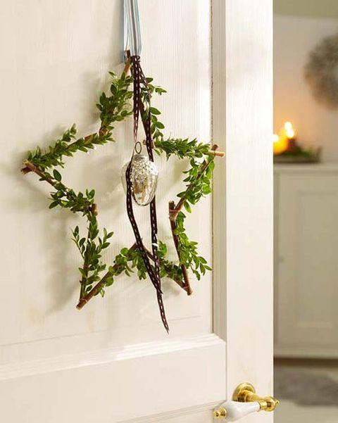 Twig, Fixture, Botany, Natural material, Door handle, Handle, Herb, Plant stem,