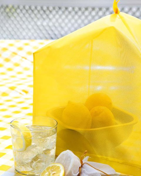 Yellow, Lemon, Citrus, Meyer lemon, Drink, Mesh, Fruit, Ingredient, Lemon peel, Sweet lemon,