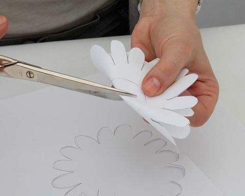 Finger, Kitchen utensil, Art, Nail, Feather, Tool, Cutlery, Paper product, Paper, Office supplies,