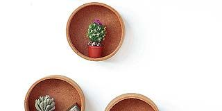 Table, Furniture, Leaf, Coffee table, Flowerpot, Still life photography, Houseplant, Serveware, Pottery, Graphics,