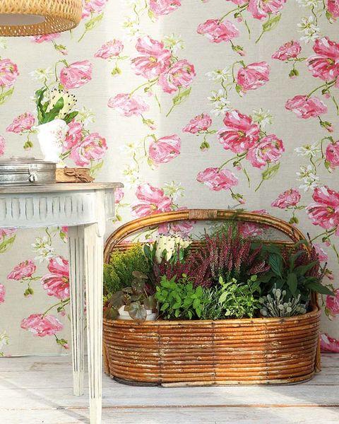 Pink, Petal, Interior design, Botany, Serveware, Peach, Wallpaper, Creative arts, Floral design, Home accessories,