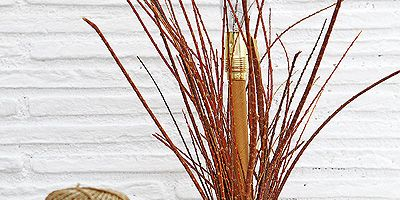 Twig, Grass family, Plant stem, Flowering plant, Still life photography, Home accessories, Sphere, Basket, Flowerpot,