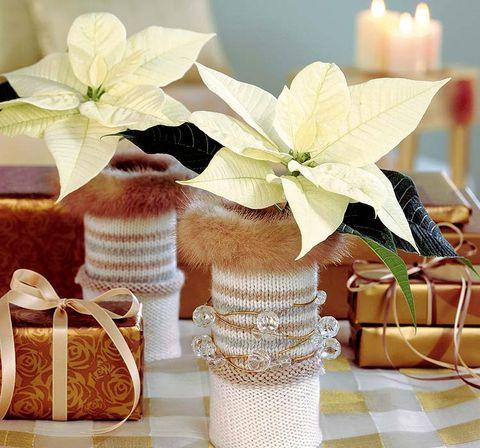 Petal, Flower, Ribbon, Cut flowers, Present, Party supply, Bag, Floral design, Flower Arranging, Flowering plant,