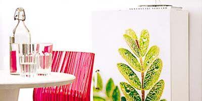 Leaf, Room, Table, Furniture, Drinkware, Glass, Interior design, Dining room, Chair, Glass bottle,