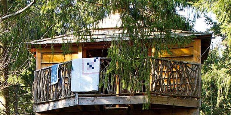 Una casita de madera en el rbol - Como construir una casa en un arbol ...