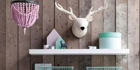 Green, Room, Interior design, Turquoise, Teal, Aqua, Interior design, Home, Fawn, Pet supply,