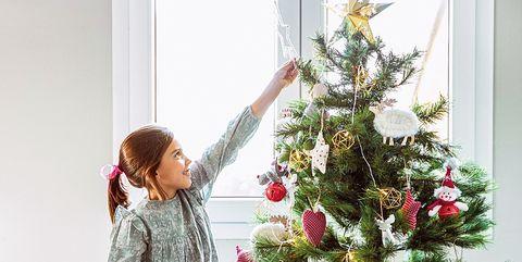 Christmas tree, Christmas decoration, Tree, Plant, Christmas ornament, Christmas, Colorado spruce, Flower, Floral design, Floristry,