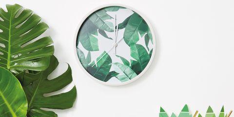 Green, Leaf, Plant, Logo, Houseplant, Illustration, Graphics,