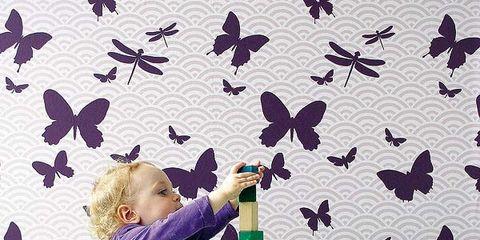 Organism, Vertebrate, Product, Green, Purple, Pink, Bird, Violet, Wall, Wing,
