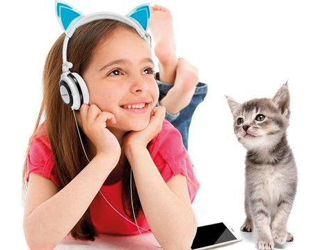 Cat, Felidae, Ear, Skin, Kitten, Small to medium-sized cats, Whiskers, Audio equipment, Child, Carnivore,