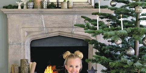 Hearth, Fireplace, Heat, Gas, Fire, Flame, Holiday, Conifer, Christmas decoration, Fir,