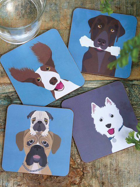 Dog, Canidae, Dog breed, Carnivore, Art, Sporting Group, Labrador retriever, Illustration, Border collie, Fawn,