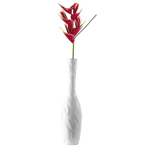 Flower, Flowering plant, Kitchen utensil, Plant stem, Drawing, Coquelicot,