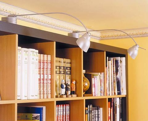 Wood, Shelf, Room, Interior design, Shelving, Bookcase, Ceiling, Publication, Light fixture, Wall,
