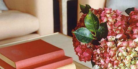 Flower, Petal, Publication, Bouquet, Centrepiece, Book cover, Cut flowers, Book, Flower Arranging, Tan,