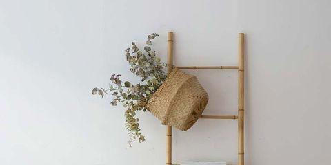 Wood, Furniture, Room, Chair, Hardwood, Teal, Turquoise, Aqua, Home accessories, Wood flooring,