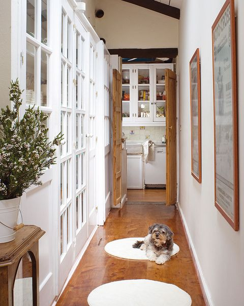 un pasillo decorado con alfombras redondas