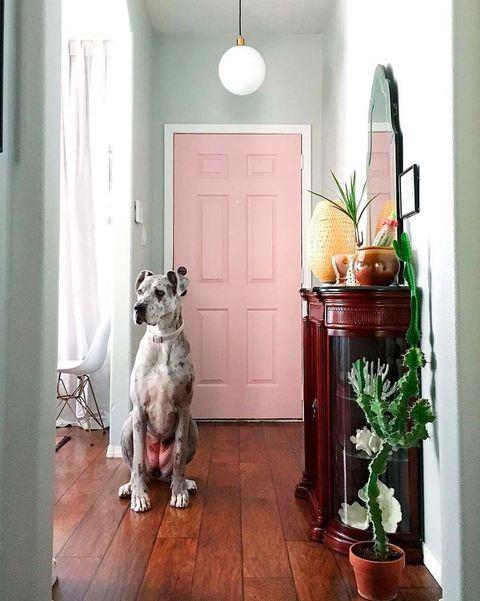 recibidor con puerta rosa