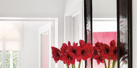 Room, Interior design, Petal, Flower, Interior design, Wall, Couch, Cut flowers, Flowering plant, Carmine,