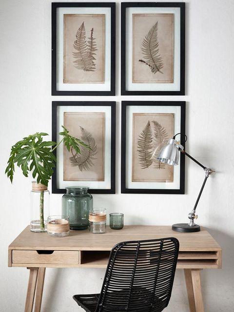 Flowerpot, Furniture, Botany, Art, Interior design, Still life photography, Houseplant, Design, Vase, Vascular plant,