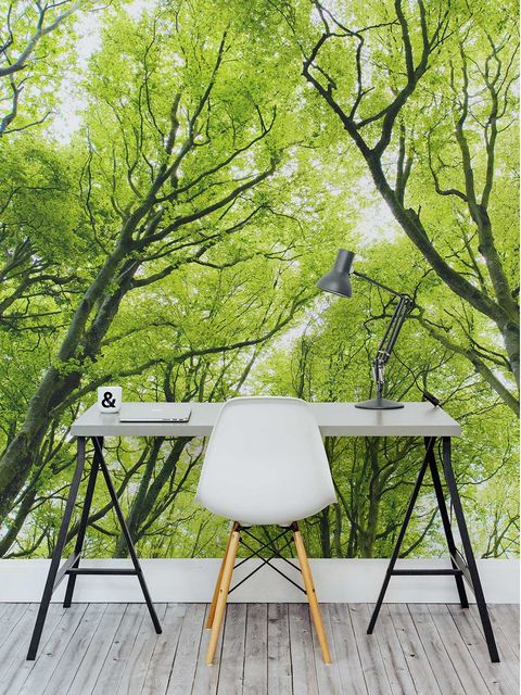 Wood, Branch, Table, Musical instrument accessory, Hardwood, Twig, Camera accessory, Trunk, Plywood, Sawhorse,
