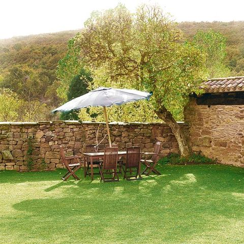 Umbrella, Outdoor table, Outdoor furniture, Bird, Stone wall, Lawn, Groundcover, Garden, Yard, Feather,