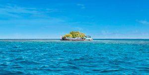 Isla de alquiler