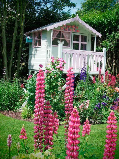 Plant, Garden, Flower, Shrub, House, Pink, Magenta, Home, Cottage, Spring,