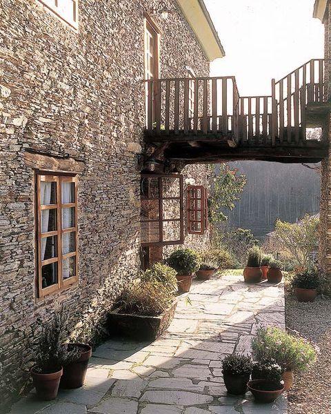 Flowerpot, Plant, Shrub, House, Residential area, Garden, Home, Backyard, Houseplant, Yard,
