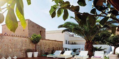 Plant, Swimming pool, Real estate, Resort, Composite material, Shrub, Flowerpot, Rectangle, Courtyard, Yard,