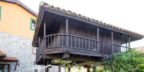 Plant, House, Real estate, Garden, Flowerpot, Shrub, Residential area, Roof, Home, Groundcover,