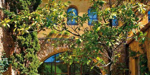 Plant, Flowerpot, Garden, Outdoor furniture, Outdoor table, Arch, Shade, Courtyard, Landscaping, Yard,