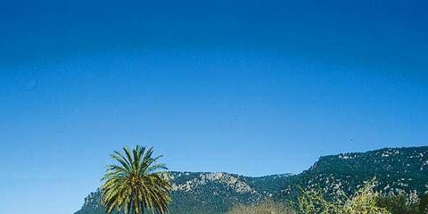 Resort, Swimming pool, Azure, Outdoor furniture, Sunlounger, Arecales, Resort town, Tropics, Seaside resort, Palm tree,