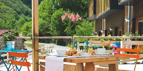 Plant, Flowerpot, Petal, Flower, Furniture, Table, Outdoor table, Outdoor furniture, Chair, Bouquet,