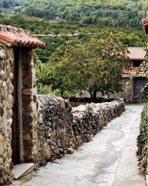 Stone wall, Rural area, Village, Shrub, Roof, Cobblestone, Walkway, Path, Plantation, Cottage,