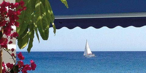 Watercraft, Sail, Petal, Flower, Sailing, Ocean, Boat, Sailboat, Sailing, Mast,