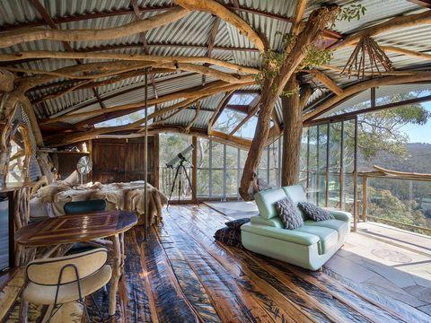 Room, Interior design, Property, Living room, Building, Tree, House, Home, Floor, Furniture,