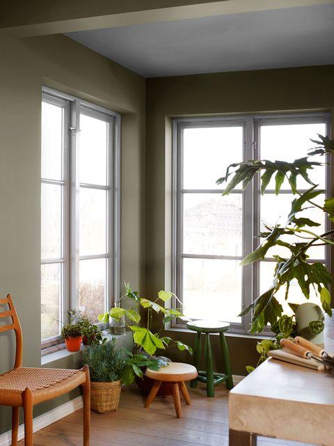 20 rincones con plantas dentro de casa for Casas decoradas con plantas naturales