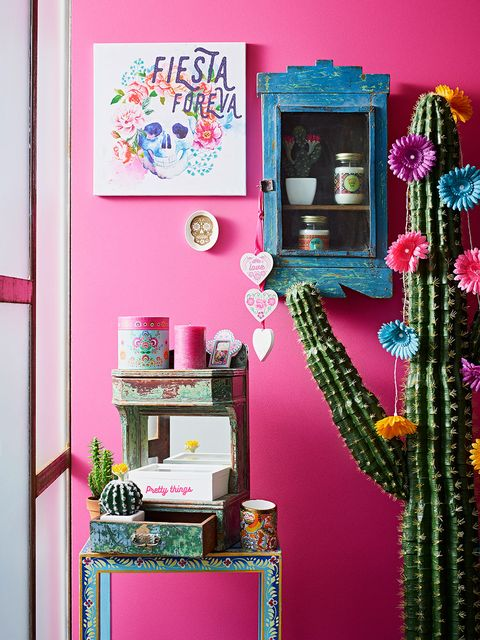 Green, Pink, Magenta, Room, Interior design, Purple, Teal, Interior design, Shelving, Creative arts,