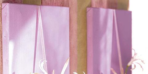 Purple, Petal, Violet, Botany, Lavender, Flowering plant, Still life photography, Peach, Still life,