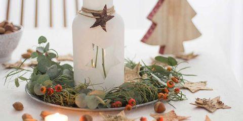 Petal, Christmas decoration, Interior design, Still life photography, Flowering plant, Holiday, Christmas, Flower Arranging, Floral design, Cut flowers,